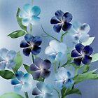 Violet Splendor by Stephanie Rachel Seely