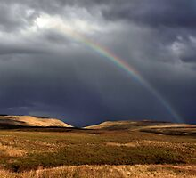 Hill Rainbow by Cat Perkinton