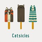 Catsicles by Christopher N