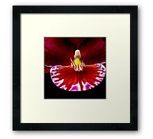 Prom - Orchid Alien Discovery Framed Print