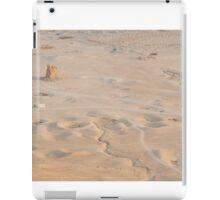 Desert in Palmira iPad Case/Skin