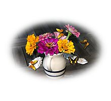 My Summer Remembrance ~ Zinnias Photographic Print