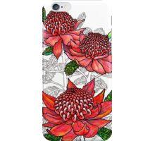 Australian Flower Series - Waratah Colour iPhone Case/Skin