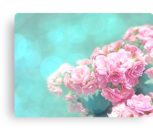 Pink roses flower photography Canvas Print