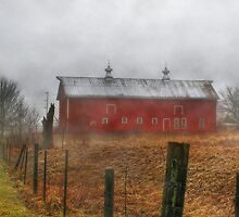 The Old Red Barn by Nadya Johnson
