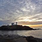 """THE NUBBLE"" by Barbny"