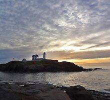 """""""THE NUBBLE""""  by Barbny"""