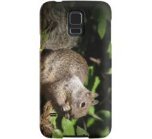 Cute Squirrel Photo and Cell Phone Case Samsung Galaxy Case/Skin