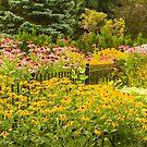 August Garden by Marilyn Cornwell
