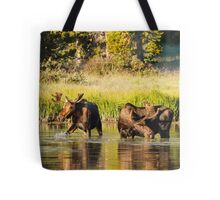 Two Moose Tote Bag