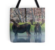 Moose in Dawn Fog Tote Bag