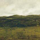 """Along the old """"kings' road""""  by GSwindlehurst"""