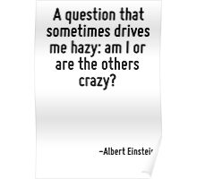 A question that sometimes drives me hazy: am I or are the others crazy? Poster