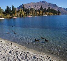 Queenstown, New Zealand by rachelstone
