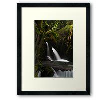 Virgin Creek Falls #1 Framed Print