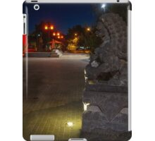 The Entrance to Golden Dragon Museum iPad Case/Skin