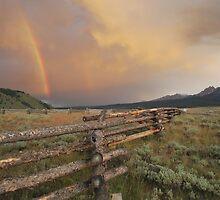 Stanley Rainbow by emilypaigeh835