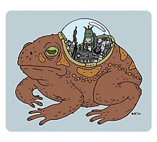 Cricket and Robot Toad Photographic Print