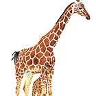 Giraffe Art - A Mother's Love - By Sharon Cummings by Sharon Cummings