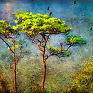 Trees of Green by Susan Werby