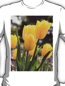 Brighter than the Spring Time! T-Shirt