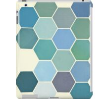 Shades of Blue iPad Case/Skin