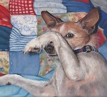 Dog in a Quilt by Pam Humbargar