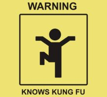 Kung Fu by Stevie B