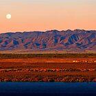Port Augusta - Evening Train 2 by Georgie Sharp