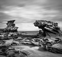 Sierra Nevada Rocks by Christine  Wilson Photography