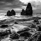 Rodeo Beach by Radek Hofman