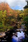 A Country Creek on an October Day by SummerJade