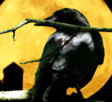 Full Moon Shining ~ Black Crow Sticker