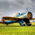 Boeing P-26 Peashooter by collpics
