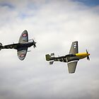 mustang and spitfire by brett watson