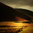RUN FOR THE HILLS AND DONT LOOK BACK by leonie7