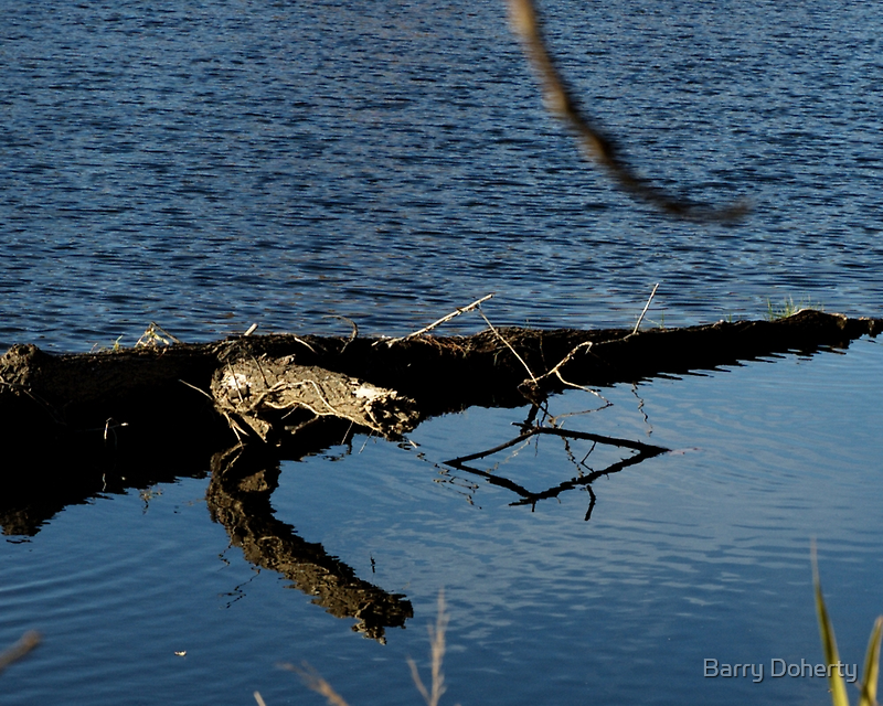 Reflecting Shapes by Barry Doherty