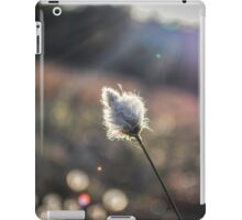 By the wayside iPad Case/Skin