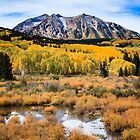 Kebler Pass Autumn by Gary Gray