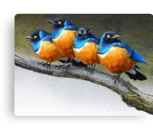 meet the snarkers- the original angry birds Canvas Print