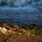 Stars Falling into the Sea by RC deWinter