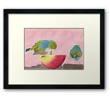 """AndreaEL's """"Holding the Apple Up!"""" in Pastel...  (Wax Eye NZ – Southland) Framed Print"""