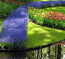 March of the Muscari - Blue Grape Hyacinths by BlueMoonRose