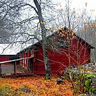 'Oxblood' painted Swedish Barn by globeboater