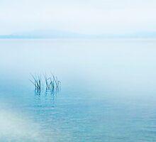 Lake Neuchatel  Switzerland by Angelika  Vogel