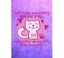 soft kitty, warm kitty, little ball of fur... Photographic Print