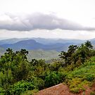 Pounding Mill Overlook by venny