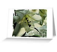 Leaf and Veins Greeting Card