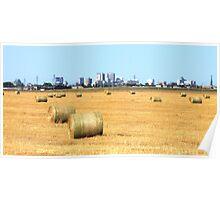 Hay! Look, it's Winnipeg! Poster