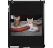 Sweeties iPad Case/Skin
